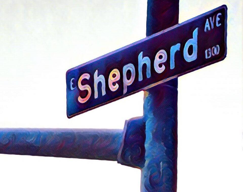 shepherd-ave-logo